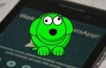 Bu WhatsApp Uygulaması Başınızı Ağrıtabilir!